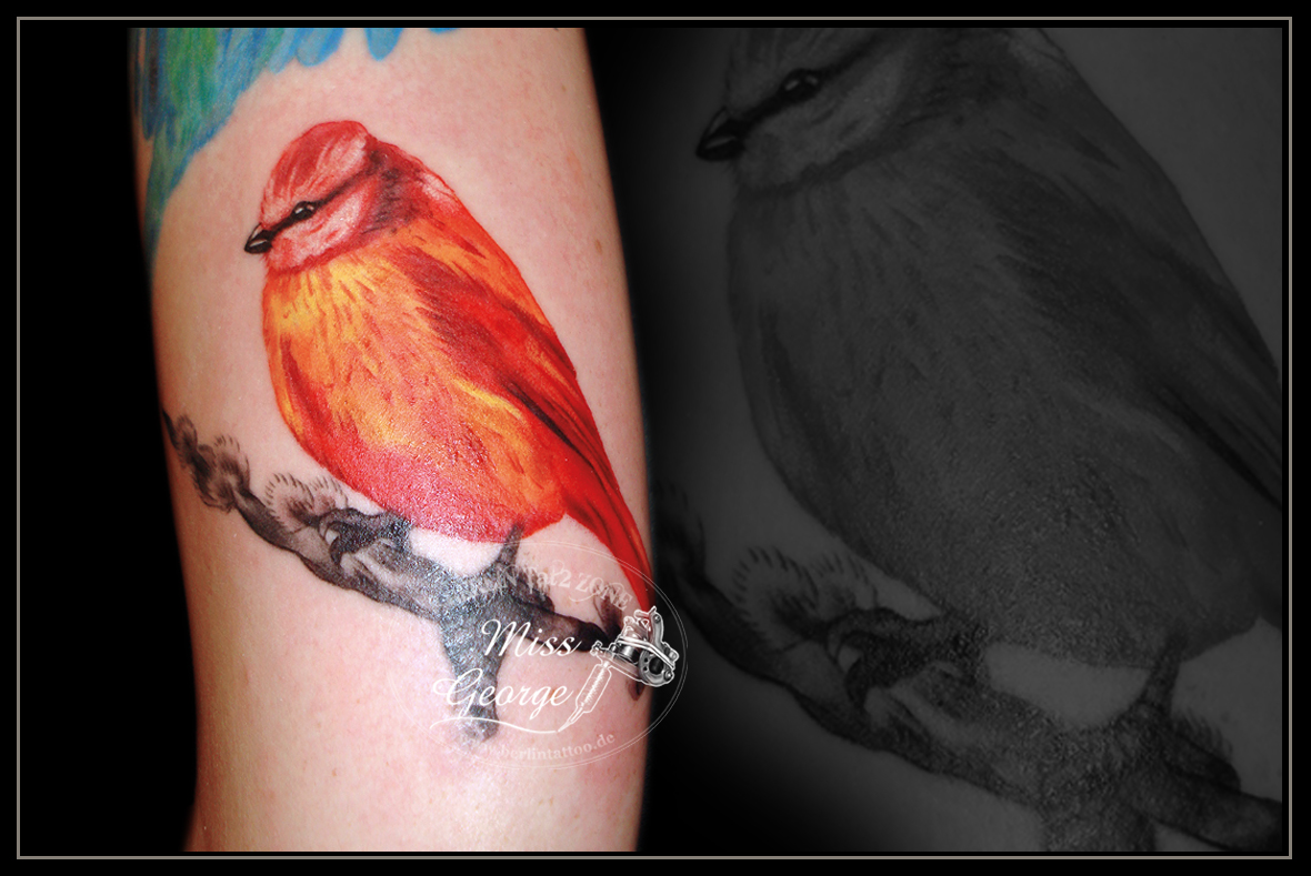 Tattoo kleiner Vogel in rot-orange Tönen. Berlin Tat2 Zone